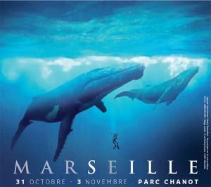 Mondial de l'image sous marine